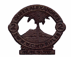 QAMR Badge.png