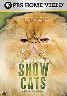 the standard of perfection show cats wikipedia