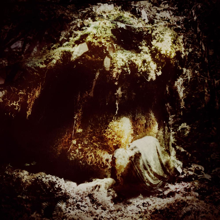 <i>Celestial Lineage</i> 2011 studio album by Wolves in the Throne Room