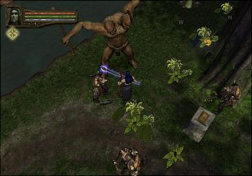 Baldur S Gate Stealing In A Room With Npc