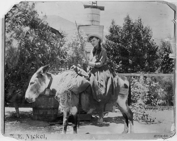 Lou Henry, age 17, on a burro and rifle-ready at Acton, California on August 22, 1891 Lou.henry.on.a.burro.at.acton.CA.1891.08.22.jpg