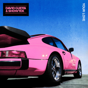 Your Love (David Guetta and Showtek song)