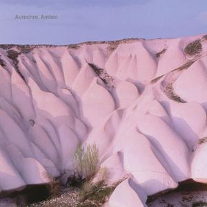 <i>Amber</i> (Autechre album) 1994 studio album by Autechre