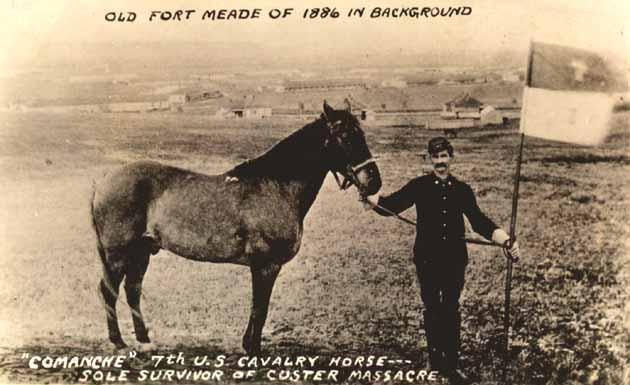 48ª Edición Rumpelstiltskin Comanche_1886