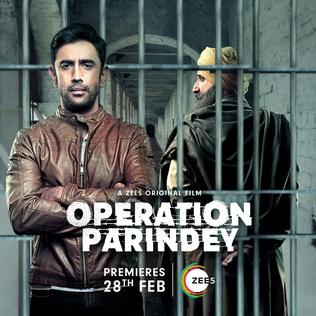Download Operation Parindey (2020) Hindi Full Movie 480p [200MB] | 720p [450MB] | 1080p [1GB]