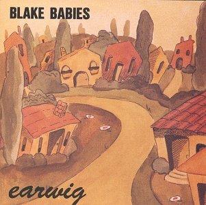 1989 studio album by Blake Babies