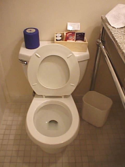 File:Usa-hotel-toilet.jpg - Wikipedia