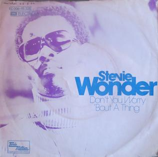 Dont You Worry bout a Thing 1974 single by Stevie Wonder