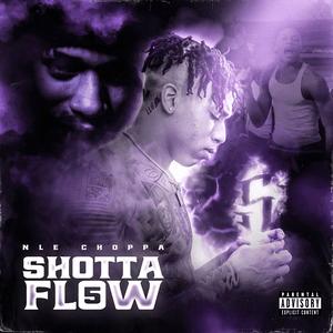 Shotta Flow 5 2020 single by NLE Choppa