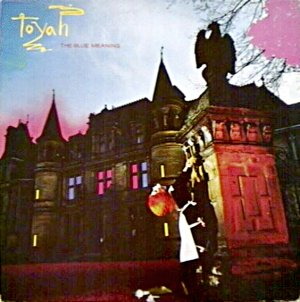 <i>The Blue Meaning</i> 1980 studio album by Toyah
