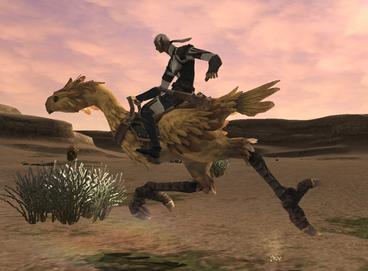The raising, breeding, and racing of Chocobos was a much requested addition to the game ChocoboridersFFXI.jpg