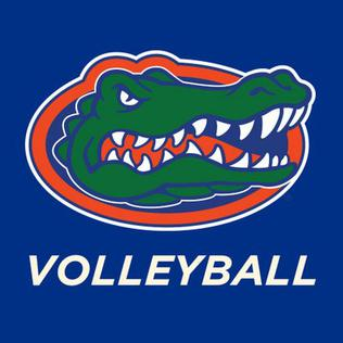 Florida Gators womens volleyball womens volleyball team of the University of Florida