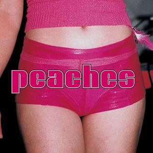 <i>The Teaches of Peaches</i> 2000 studio album by Peaches