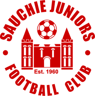 Sauchie Juniors F.C. Association football club in Scotland