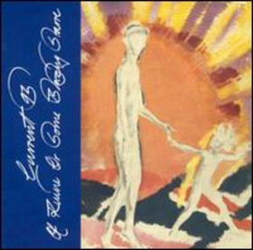 <i>Of Ruine or Some Blazing Starre</i> 1993 studio album by Current 93