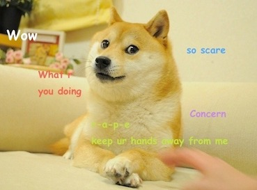 Doge meme was supposed to go here but for some reason doge does not approve of u ;(