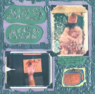 <i>Sad Sappy Sucker</i> compilation album by Modest Mouse