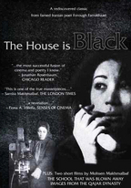 The house is black.jpg