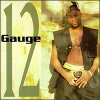 <i>12 Gauge</i> (12 Gauge album) album by 12 Gauge