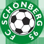 FC Schönberg 95 German football club