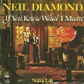 If You Know What I Mean single by Neil Diamond