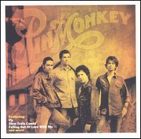 <i>Pinmonkey</i> (album) 2002 studio album by Pinmonkey