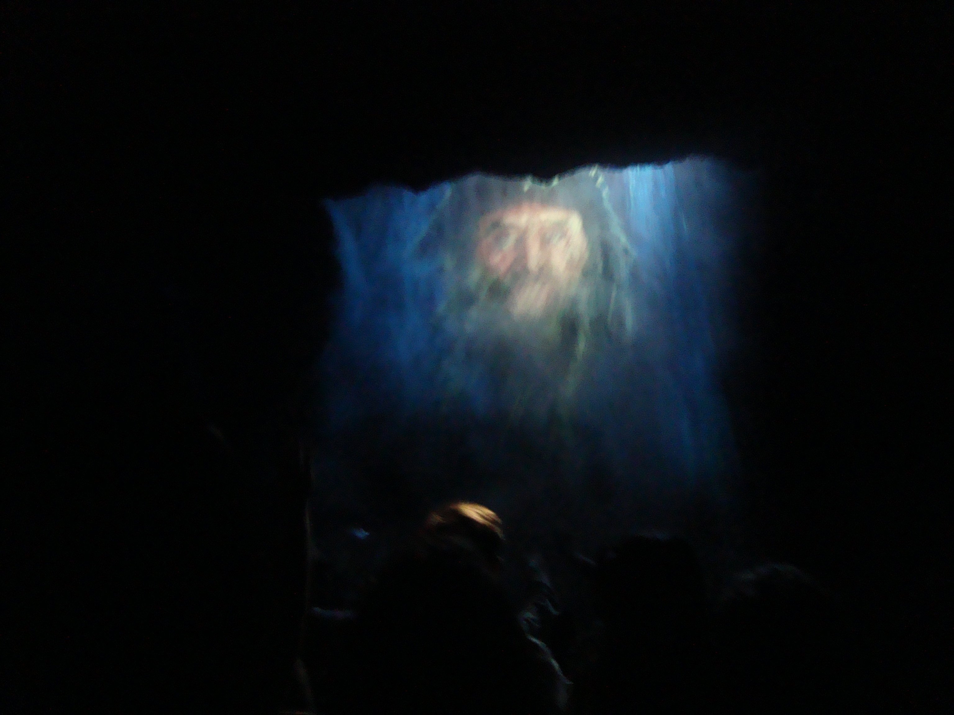 Pirates of the Caribbean (attraction) - Wikipedia