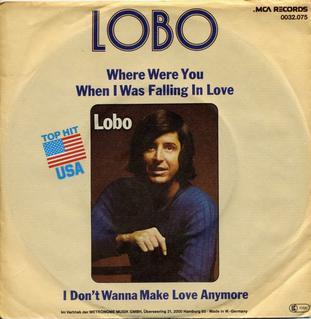 Where Were You When I Was Falling In Love single by Lobo