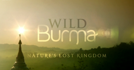 Wild Burma Nature S Lost Kingdom