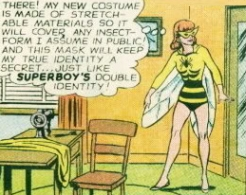 Insect Queen One DC Comics