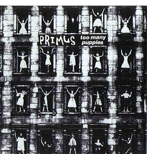 Too Many Puppies 1990 single by Primus
