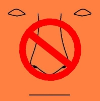 A drawing of a face with a No symbol over the nose