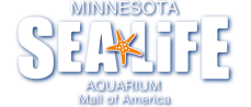 Sea Life Minnesota Aquarium - Wikipedia