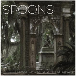 <i>Unexpected Guest at a Cancelled Party</i> 2007 compilation album by Spoons