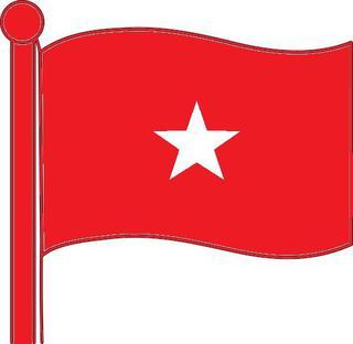 Bolshevik Party of India