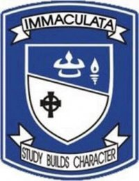 blue and white s logo