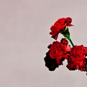 <i>Love in the Future</i> 2013 studio album by John Legend