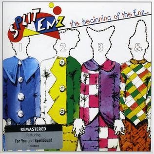 <i>The Beginning of the Enz</i> 1979 compilation album by Split Enz