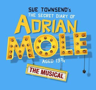 The Secret Diary Of Adrian Mole Poster Artwork on Chocolate Run