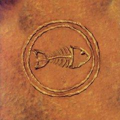 <i>Fishbone 101: Nuttasaurusmeg Fossil Fuelin the Fonkay</i> 1996 compilation album by Fishbone