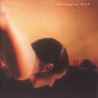 File:Porcupine tree on the sunday of life.jpg