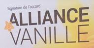 Vanilla Alliance Airline alliance