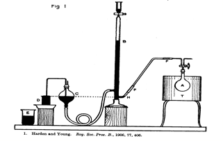 file apparatus for collecting and measuring the gases evolved    file apparatus for collecting and measuring the gases evolved during fermentation  diagram
