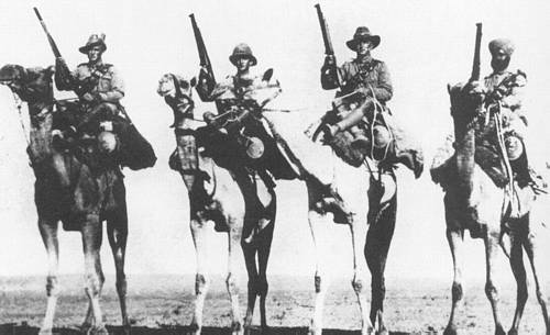 Imperial Camel Corps Wikipedia