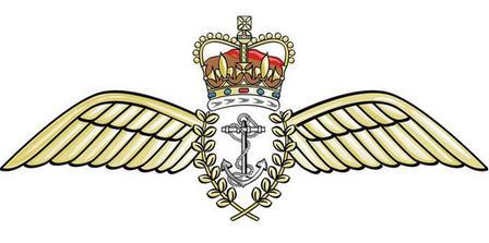 FleetAirArm_wings.jpg