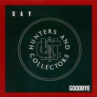 Say Goodbye (Hunters & Collectors song)