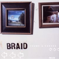 Braid-FrameAndCanvas.jpg
