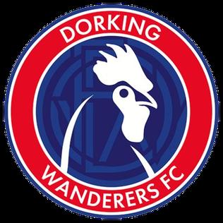 Image result for dorking wanderers fc badge