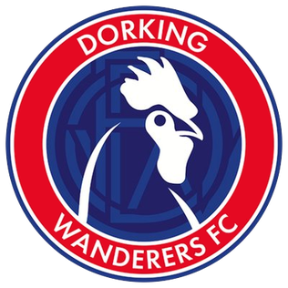 http://upload.wikimedia.org/wikipedia/en/6/6a/Dorking_Wanderers_F.C._logo.png