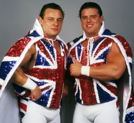 The British Bulldogs Professional wrestling tag team